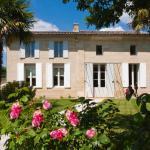 RARECAT Villa, Saint-Émilion