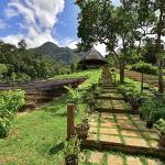 Sheridan Organic Farm and Eco Village,  Maratapi