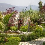 Oxygen Hills View Garden Living, Rājpur