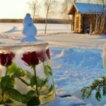 Hotel Pictures: Ainola Cottage, Tölvä