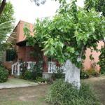 Villa Messavrisi, Halikounas