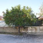 Villa Rubera,  Fanusa