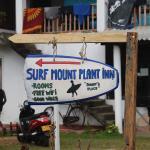 Surf Mount Plant Inn Midigama, Midigama East