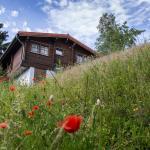 Werrapark Resort Ferienhausanlage Am Sommerberg, Masserberg