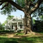 Twin Oaks Inn,  Natchez