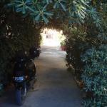 Adonis Beach Hotel, Amoudara Herakliou