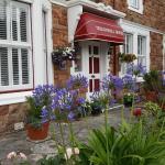 Tregonwell House - Guest House,  Minehead