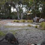 Fotos de l'hotel: Kangaroo Island Wilderness Retreat, Flinders Chase