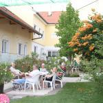 Pension & Weingut Storchenblick, Illmitz