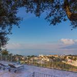 Terrace on Mediterranean,  Sorrento