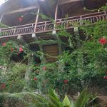 Kupu-Kupu Garden Guest House & Cafe, Bukit Lawang