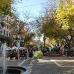 Corazón Mendocino,  Mendoza