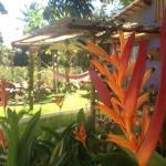 Jeribucaville, Itacaré
