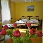 Garden Apartment, Timişoara