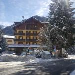 Hotel Pineta, Ponte di Legno