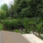 Hotellikuvia: Tropikal Bunec, Piqeras