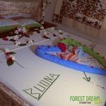 Forest Dream Village, Gede