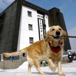 Hotel Pictures: Cerna Bouda, Janske Lazne