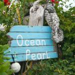 Hotel Pictures: Ocean Pearl Bonefishing Resort, High Rock