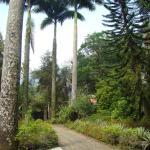 Casa de Campo dos Sonhos, Cachoeiras de Macacu