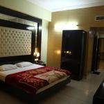 Hotel Narain Continental, Patiāla