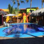 Leo's Baja Oasis,  La Paz