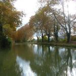 Maison jardin plaisir de l'accueil, Carcassonne