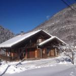 Hotel Pictures: Chalet Narcisse, Sixt