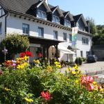 Hotel Pictures: Pension Allebrodt, Lennestadt