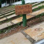 Pousada Sitio Costa Verde,  Ubajara
