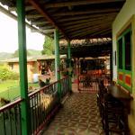 Coffee Trails Finca Las 2mm,  Pereira