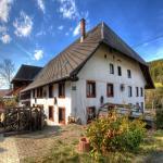 Schwarzwaldhaus Krebs,  Lenzkirch