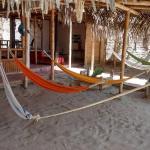 Casa Puerto Sol, Los Órganos
