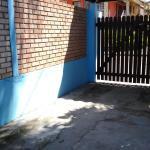 Tartaruga azul,  Florianópolis