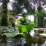 Aathid Garden Khao Lak, Khao Lak