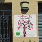 The Pommy Tree, Canberra