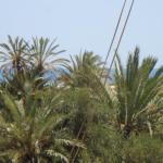 Residence Phila,  Midoun
