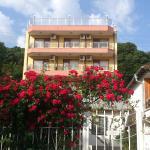 Guest House Buki, Sveti Vlas