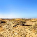 Trail Head Condo,  Copalis Beach