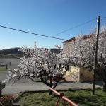 Kmetija Medljan, Izola