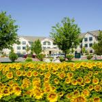 Extended Stay America - Reno - South Meadows, Reno