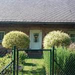 Venkovský dům v Podkrkonoší, Stará Paka