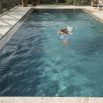 Villa GILDA Relax & Living,  Montignoso