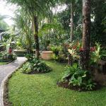 Bird Nest Sanctuary, Ubud