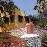 Bandys Riversong,  Chinchavli