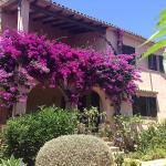Casa Vindobona, Cala Millor