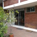 Mario Suite, Quito