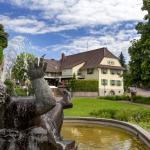 Hotel Traube,  Offenburg