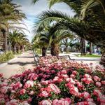 Petit Hotel, San Benedetto del Tronto