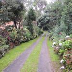 Tô na Roça, Cunha